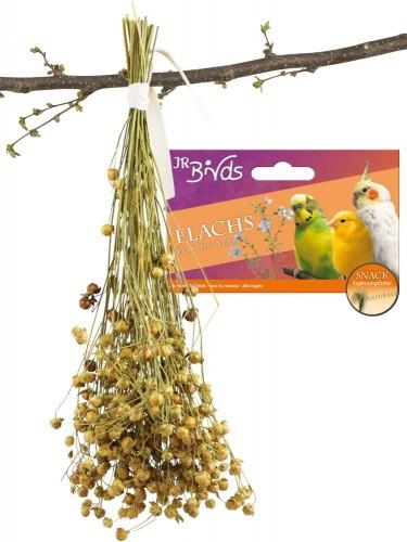 JR Farm Birds Leinsaat (Flachs) 6 x 30 g