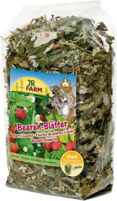 JR Farm Beeren Blätter 6 x 100 g