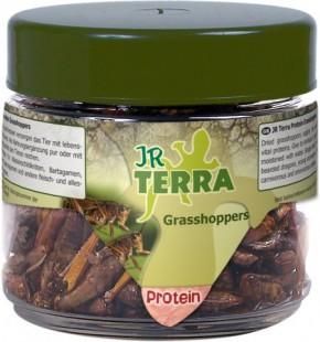 JR Farm Terra Protein Grasshoppers 4 x 15 g