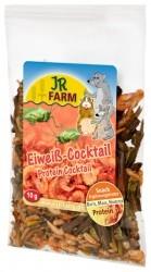 JR Farm Eiweiß Cocktail 12 x 10 g