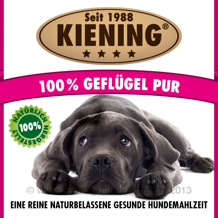 Kiening Dog 100% Geflügel pur 12 x 410 g