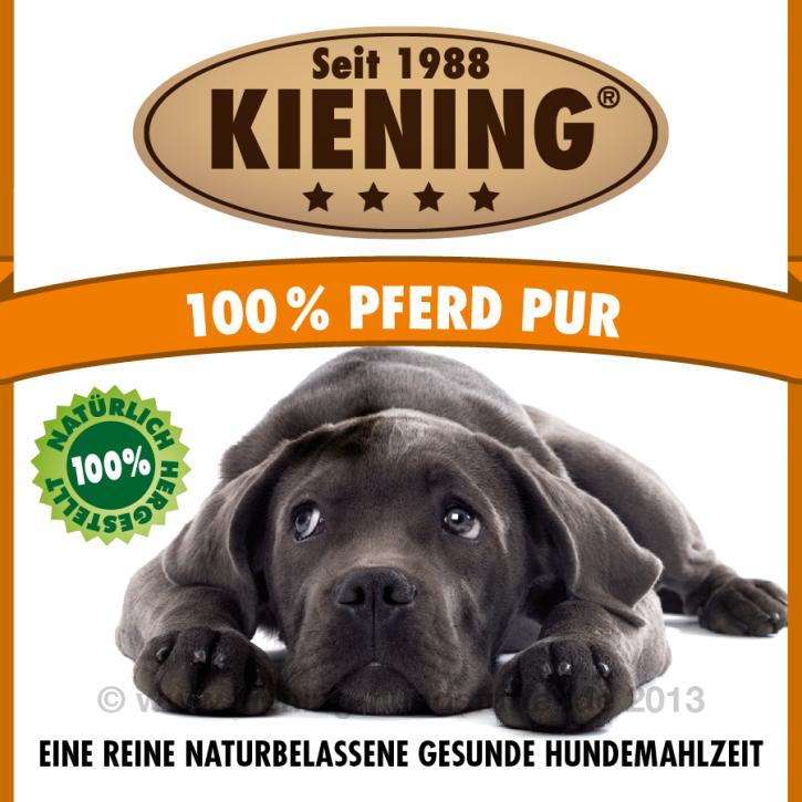 Kiening Dog 100% Pferd pur 12 x 410 g