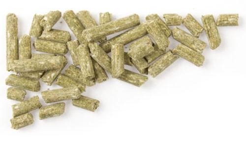 Mifuma Mineral Premium (Eimer) 10 kg (SPARTIPP: unsere Staffelpreise)