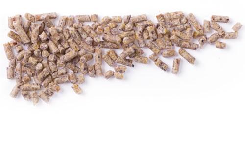 Mifuma Wassergeflügel Aufzucht WA (Pellet 2,2 mm) 25 kg