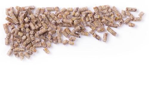 Mifuma Ziergeflügel Aufzucht ZA (Pellet 2,2 mm) 25 kg