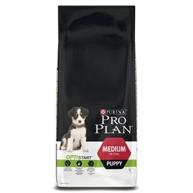 Pro Plan Dog Puppy Medium mit Huhn 3 kg oder 12 kg (SPARTIPP: unsere Staffelpreise)