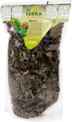 JR Farm Terra Fibre Berry 6 x 75 g