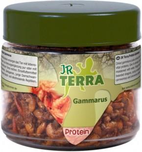 JR Farm Terra Protein Gammarus 4 x 20 g