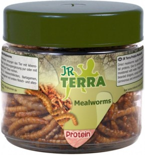 JR Farm Terra Protein Mealworms 4 x 20 g