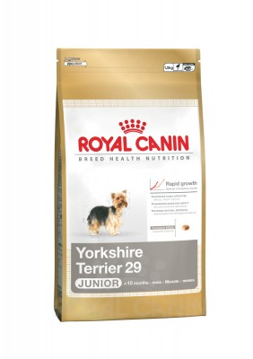 Royal Canin Breed Yorkshire Terrier 29 Junior 500 g oder 1,5 kg (SPARTIPP: unsere Staffelpreise)