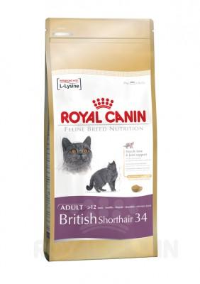 Royal Canin Feline British Shorthair 400 g, 2 kg, 4 kg oder 10 kg (SPARTIPP: unsere Staffelpreise)