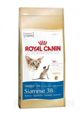 Royal Canin Feline Breed Siamese 38, 400 g, 2 kg, 4 kg oder 10 kg (SPARTIPP: unsere Staffelpreise)