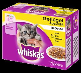 Whiskas Junior Geflügelauswahl in Gelee 12-er Multipack 48 x 100 g
